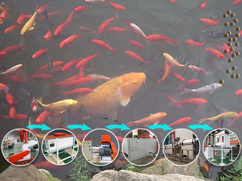 Floating Fish Feed Plant For Sale