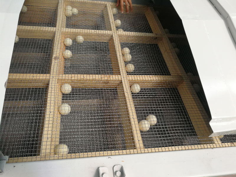 Grading Sieve for Chicken Feed Pellet Line