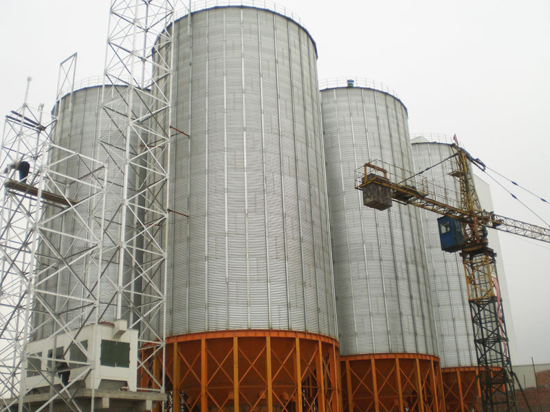 Steel Silo animal feed factory